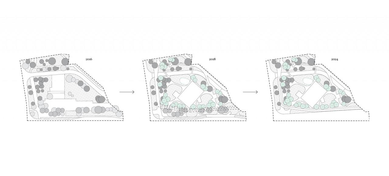 pracownia architektury krajobrazu Młynówka Królewska